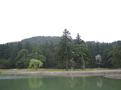 20060512_5.jpg